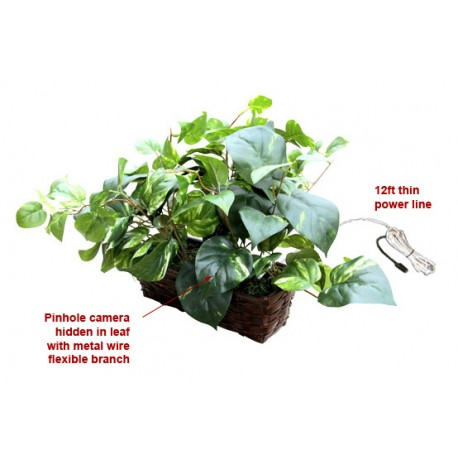 Fake Plant Covert Wifi Spy Camera