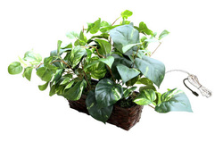 Self Recording Fake Plant Hidden Spy Nanny Covert Camera